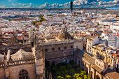 City View From Giralda Tower Seville Cathedral Garden Bull Ring Spain