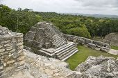 Temple On A Mayan Ruin At Caracol