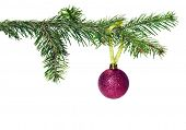 Christmas tree branch with decoration  ball