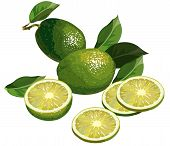 Limes with hald and slices