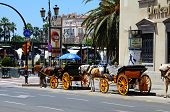 Tourist horse and carriage, Malaga, Spain.