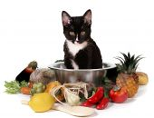 What;s for dinner?