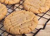 Peanut Butter Cookies Closeup