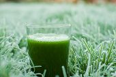 stock photo of kale  - healthy organic green detox juice in a frozen grass - JPG