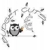 Budget cuts Euro