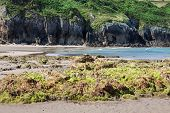 beach of San Vicente de la Barquera village an d Oyambre Cape in Cantabria Spain