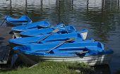 Pontoon and boats