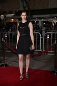 LOS ANGELES - FEB 24:  Jessica De Gouw at the