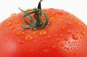 Ripe Tomato Closeup