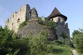 Ruins of the Medieval Castle Somoska