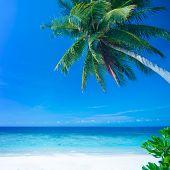 Tropical beach, Lang Tengah Island Malaysia.