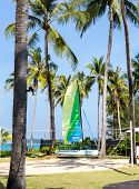 Catamaran On The Beach With Volleyball Court