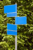 Road Signs With A Green Leaves Background