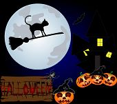 stock photo of sweeper  - Black cat flying on a sweeper on the night sky - JPG