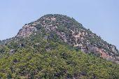 A Hill