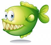 Illustration of a big green fish on a white background