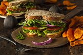 picture of tomato sandwich  - Healthy Vegetarian Veggie Sandwich with Spinach Tomato Cucumber