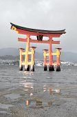 Floating Torii