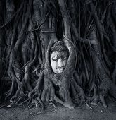 picture of budha  - Travel to Thailand - JPG