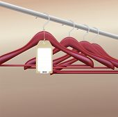 Wooden hangers with blank tag