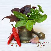 Spices And Herbs On A  Light Wooden Background