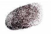 picture of dna fingerprinting  - Black Ink Fingerprints on White Paper - JPG