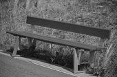 Empty Bench Black And White