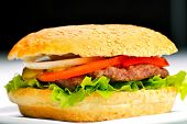 pic of hamburger-steak  - still life with fast food hamburger menu - JPG