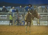 The Clark County Fair And Rodeo