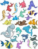 image of sea life  - This is a set of cartoon illustrations of a variety of fish and marine life - JPG