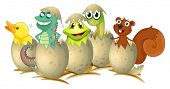 Illustration of animals hatching