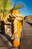 Golden Ropes