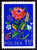 Postage Stamp Poland 1974 Rose Flower