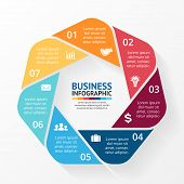 Business circle infographic, diagram with options