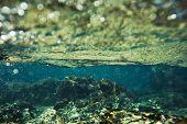underwater rock background
