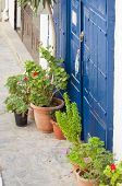 stock photo of tourist-spot  - Potted Plants in the Street of Hora Sfakion on Crete - JPG
