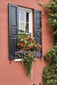 Charming Window Box