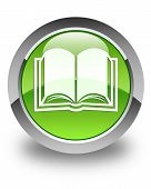 Book Icon Glossy Green Round Button