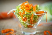Salad Of Fresh Chopped Cabbage And Carrots