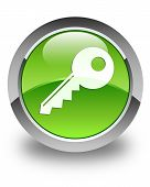 Key Icon Glossy Green Round Button
