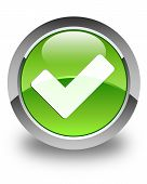 Validate Icon Glossy Green Round Button