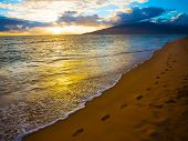 picture of footprint  - Footprints along beautiful beach on Maui in Hawaii - JPG