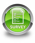 Survey Glossy Green Round Button