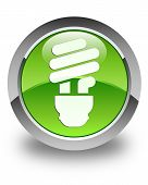 Bulb Icon Glossy Green Round Button