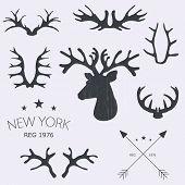Deer horns set. Vector illustration.