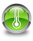Thermometer Icon Glossy Green Round Button