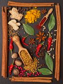 still life with spices and herbs in the frame