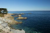 Pacific Grove-monterey Bay Seascape #2