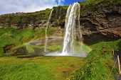 Seljalandsfoss waterfall in Iceland. Sunny day in July. Large rainbow decorates  drop of water