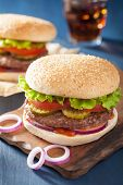 stock photo of beef-burger  - burger with beef patty lettuce onion tomato ketchup - JPG